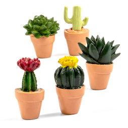 LIV-131, Cactus, decomagneten in cactus-vorm, set van 5